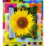Cheselyn Amato_Blooming Grids_013