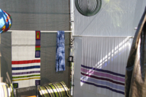 Inside the Sukkah (1), Sukkot 2009