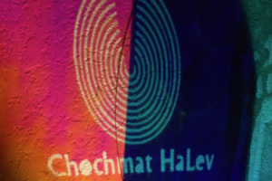 Welcome Lantern (Chochmat Halev, Berkeley), 2020, Radiant Film/Silhouettes/Acrylic Disc, 36inHx30inWx12inD