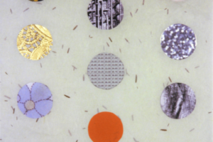 Tree of Life Chronicles/Dot Collage (Light Green Fleck with G), 2004, Collage, 15inHx11inW